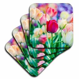 3dRose cst_276010_3 Red Flower Between Colorful Tulips on a